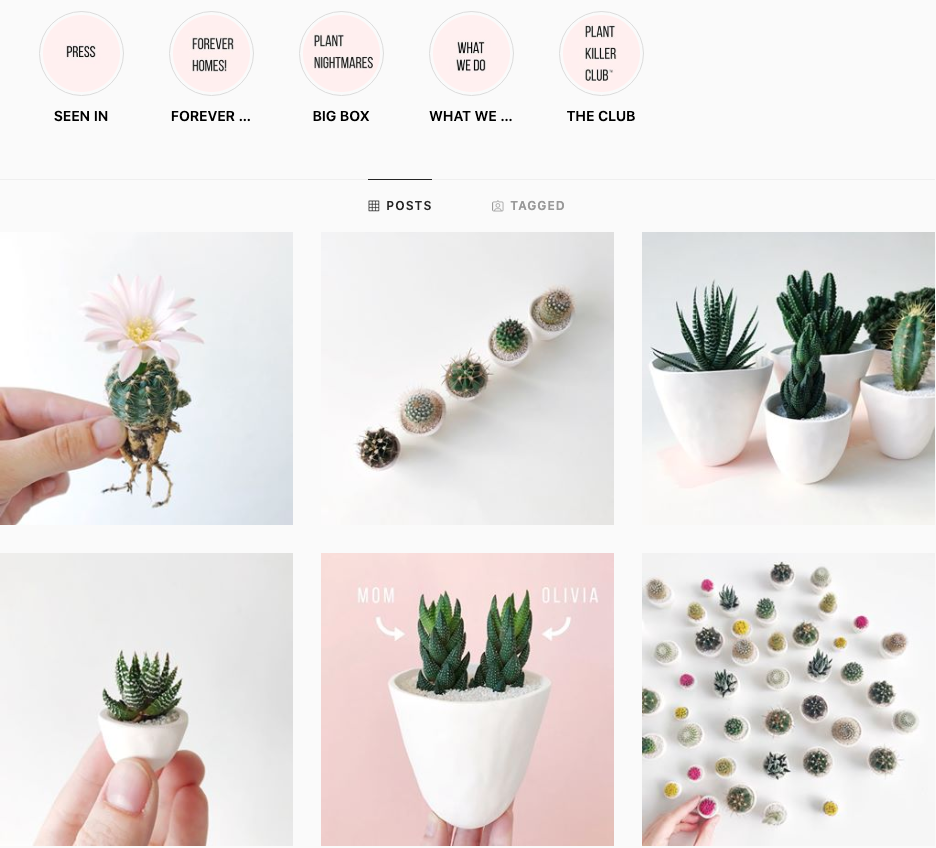 Creating a Consistent Brand Story and Aesthetic
